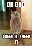 need-it